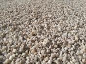 graviers 6/10 quartz blanc cassé